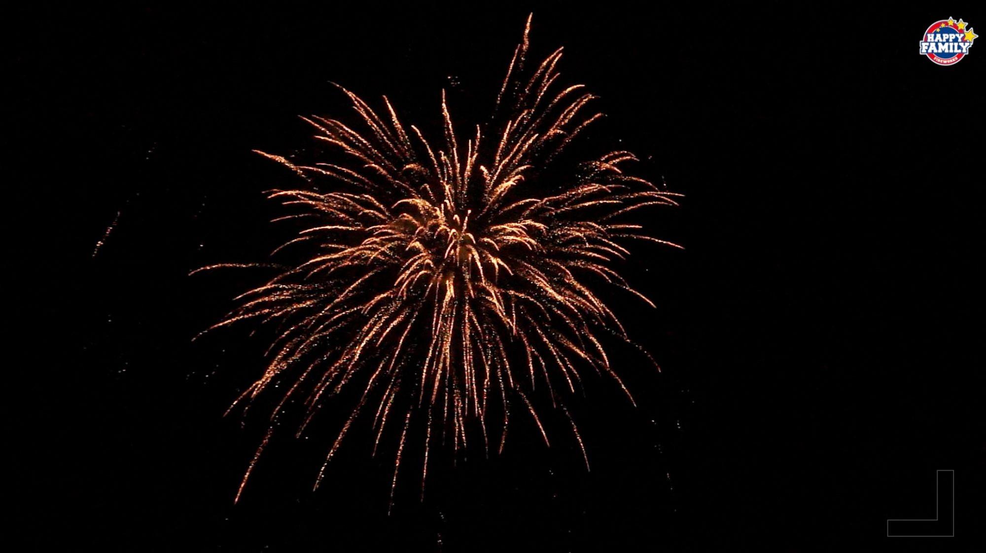 Noite de demonstração para os novos itens do mercado dos EUA, temporada de 2022, do Happy Family Fireworks